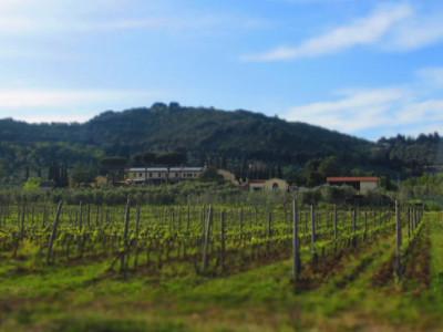 Agriturismo campagna Toscana