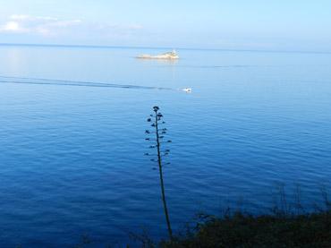 Mare e spiagge della Toscana