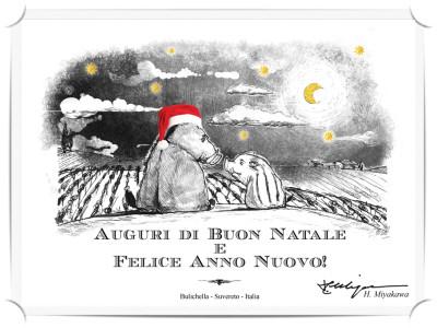 Buon Natale da Bulichella